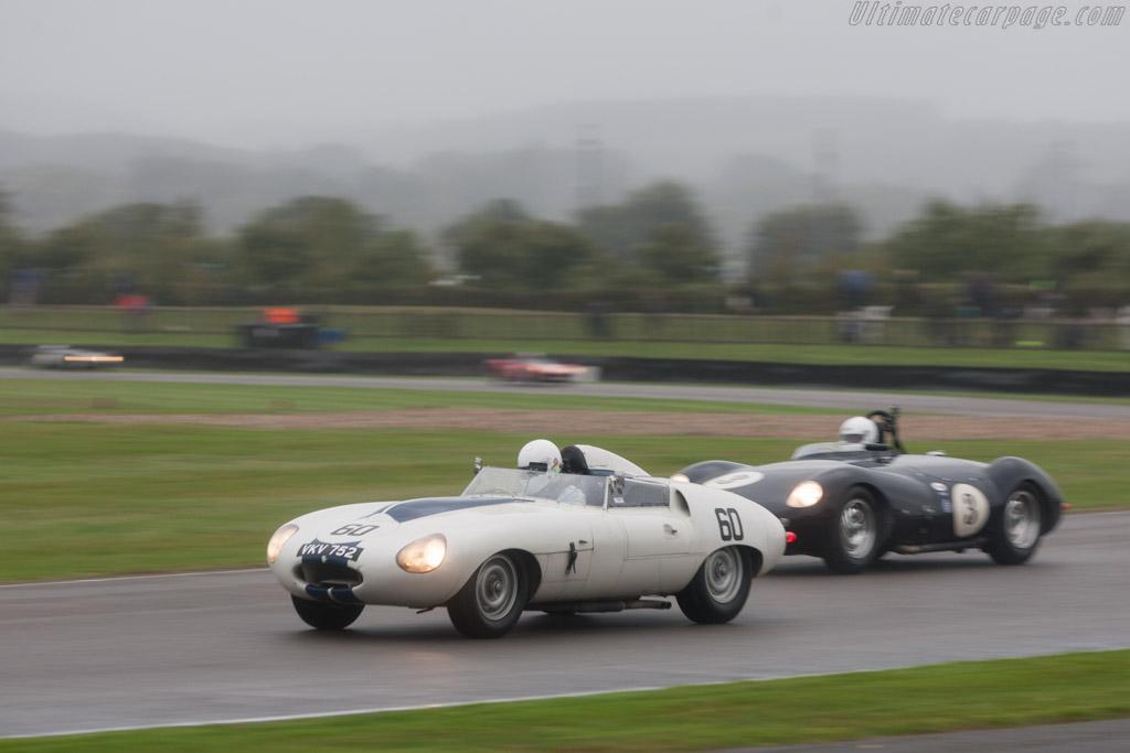 Jaguar E2A - Chassis: E2A - Driver: Stefan Ziegler  - 2013 Goodwood Revival