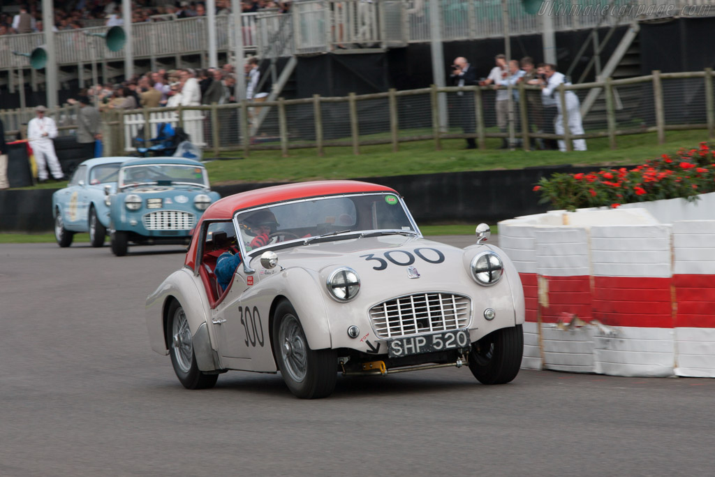Triumph TR3 - Chassis: TS 10073 - Entrant: David Long - Driver: Warren Kennedy  - 2013 Goodwood Revival