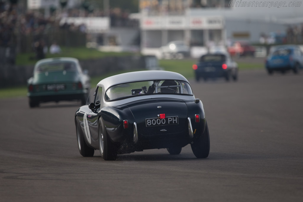 AC Ace Ford  - Entrant: Ten Tenths Ltd - Driver: Holly Mason-Franchitti  - 2014 Goodwood Revival