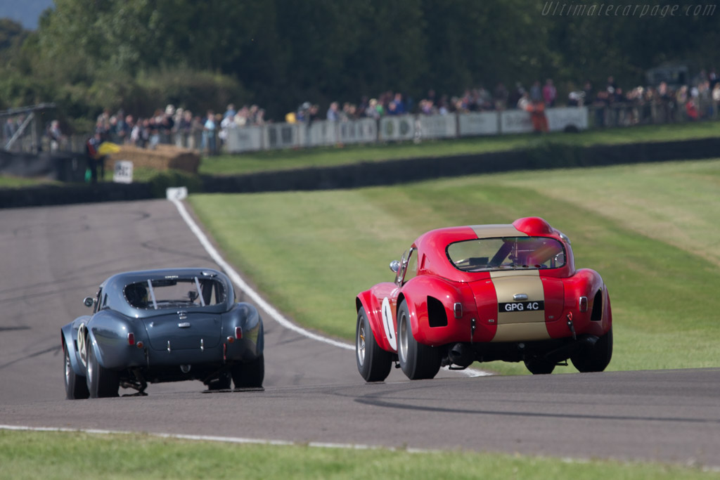 AC Shelby Cobra - Chassis: HEM6 - Entrant: Grahame Bryant - Driver: Oliver Bryant / Andrew Smith  - 2014 Goodwood Revival