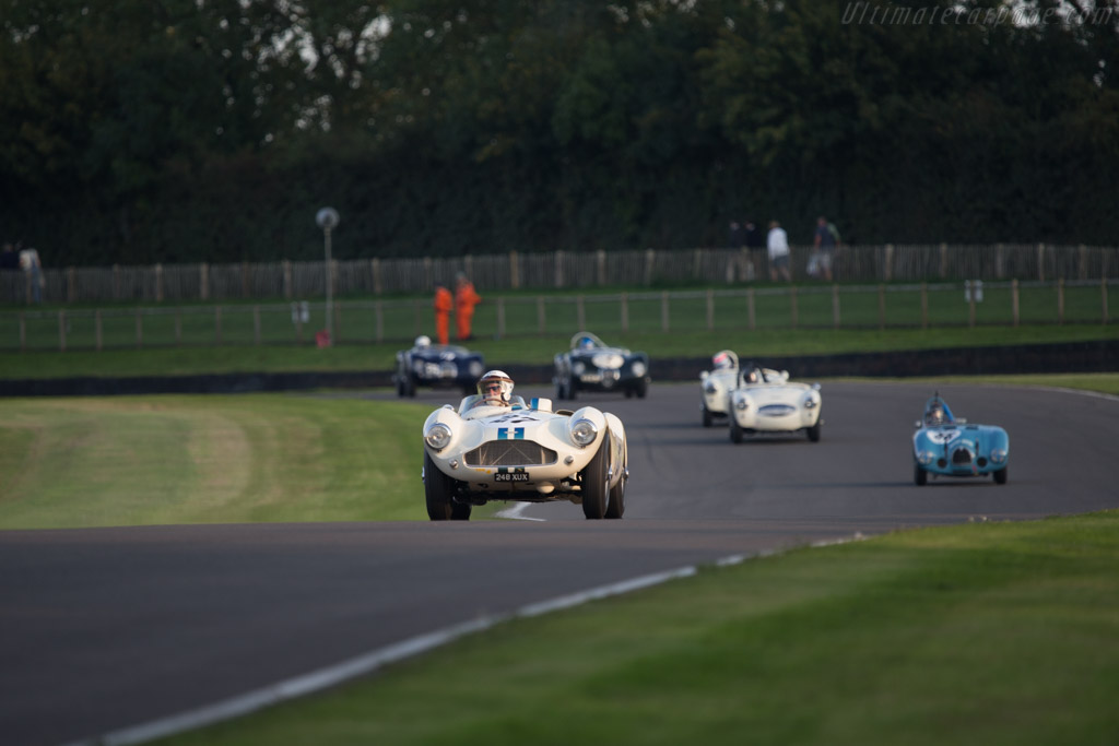 Aston Martin DB3S - Chassis: DB3S/115 - Driver: David Bennett  - 2014 Goodwood Revival