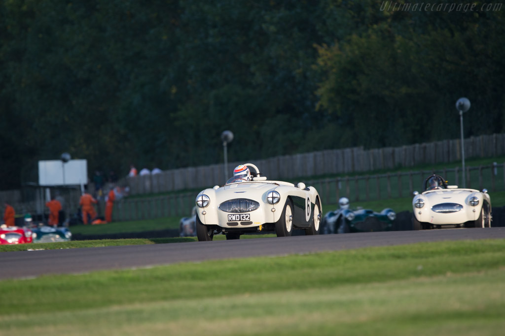 Austin Healey 100S - Chassis: AHS 3702 - Entrant: Peter Thornton - Driver: Andrian Willmott  - 2014 Goodwood Revival