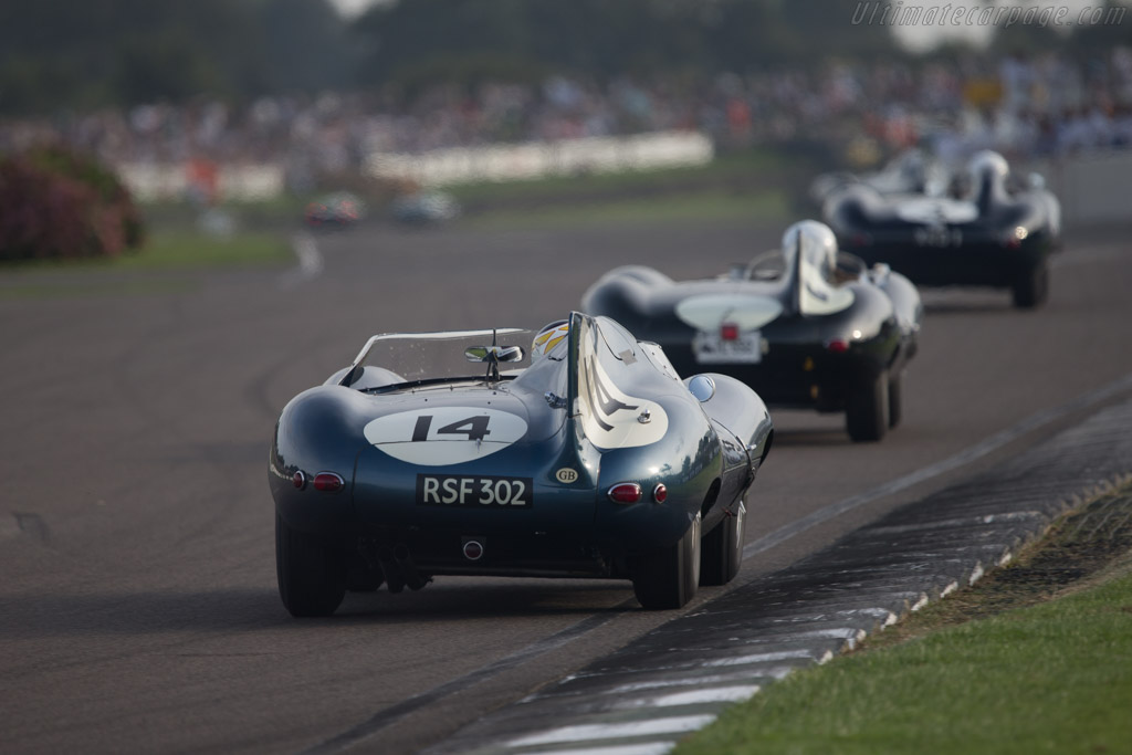 Jaguar D-Type Long Nose - Chassis: XKD 504 - Driver: Christian Glaesel  - 2014 Goodwood Revival