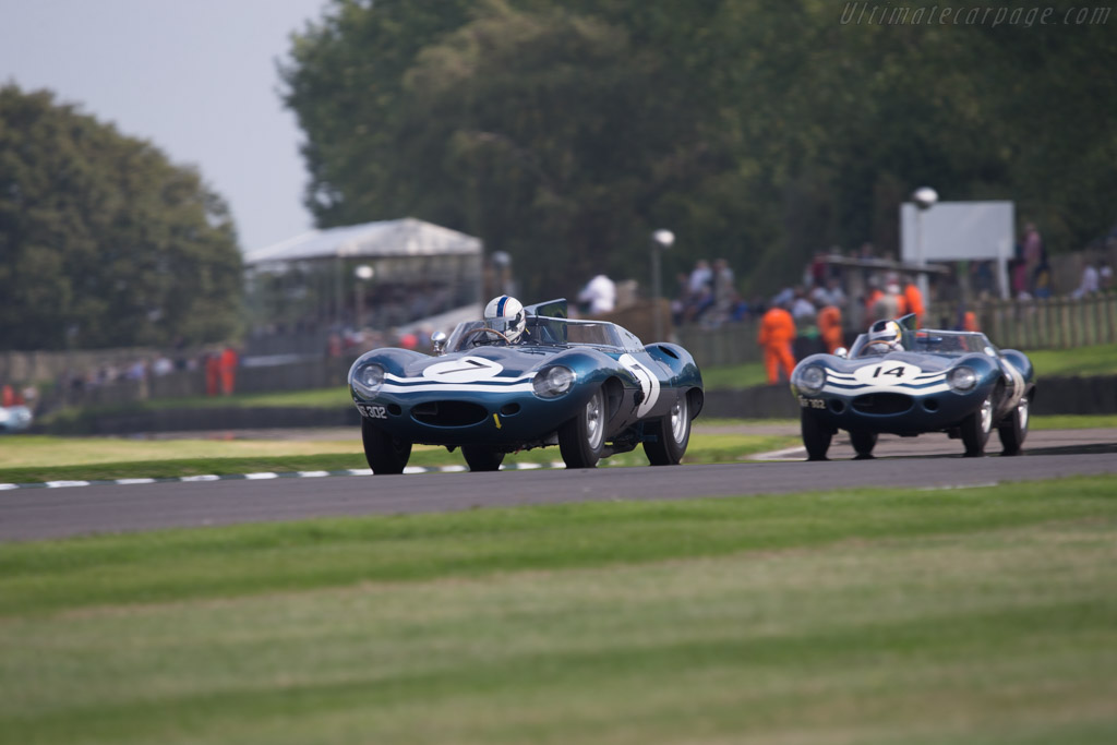 Jaguar D-Type Long Nose - Chassis: XKD 502 - Entrant: Frederic Collot - Driver: Fabien Sarrailh  - 2014 Goodwood Revival