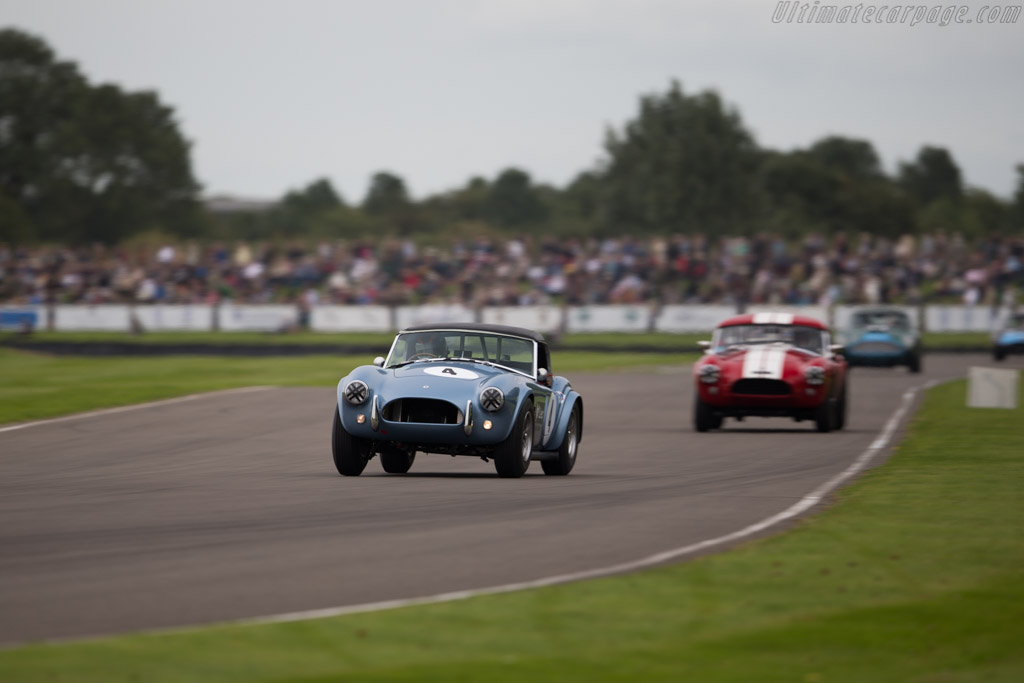 AC Shelby Cobra 289 - Chassis: COB6024 - Entrant: John Goodman - Driver: Arie Luyendyk / Rob Hall  - 2015 Goodwood Revival
