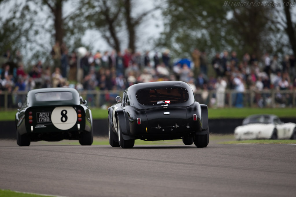 AC Shelby Cobra 289 - Chassis: CSX2127 - Entrant: Ludovic Caron - Driver: Ludovic Caron / Anthony Reid  - 2015 Goodwood Revival
