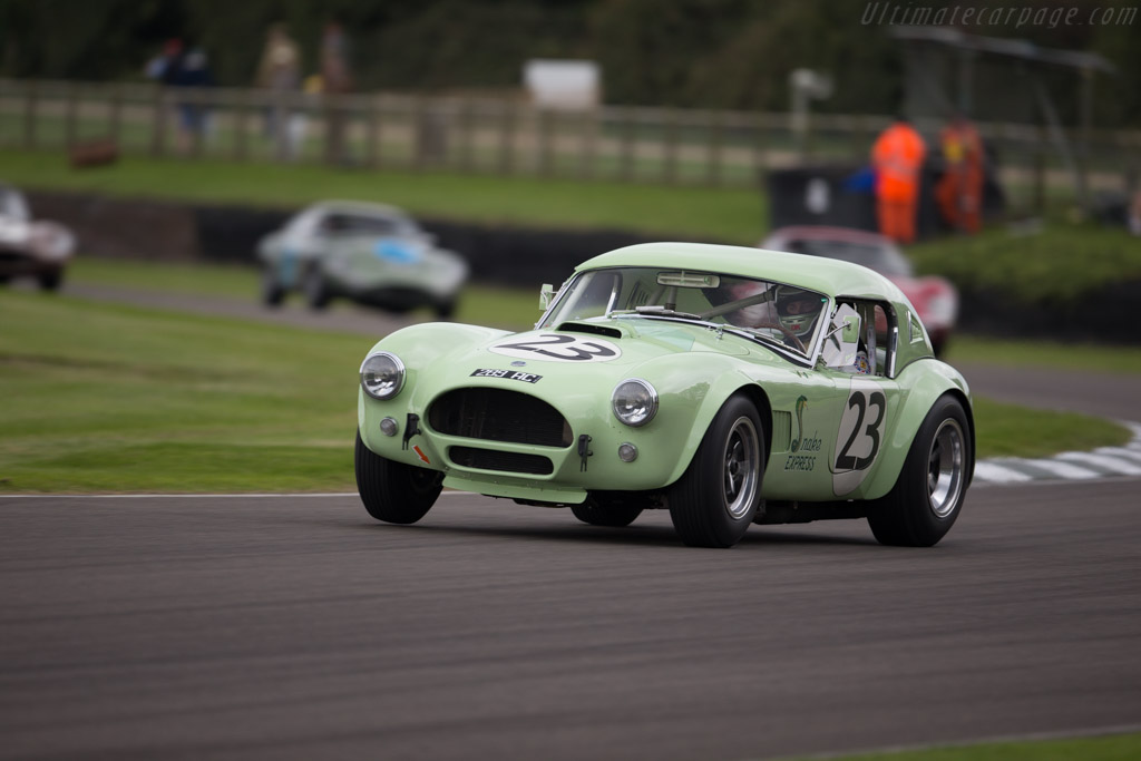AC Shelby Cobra 289 - Chassis: CSX2566 - Entrant: Russell Jones - Driver: James Cottingham / Joe Twyman  - 2015 Goodwood Revival