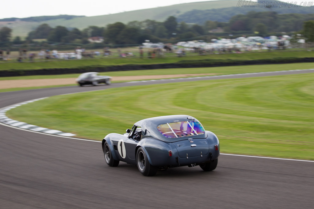 AC Shelby Cobra 289 - Chassis: CSX2049 - Entrant: David Hart - Driver: David Hart / Giedo van der Garde  - 2015 Goodwood Revival