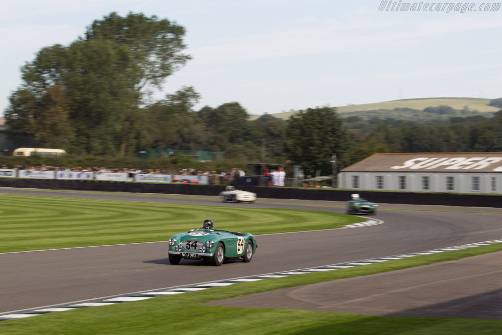 Austin Healey 100S - Chassis: SPL-225B - Entrant: Jonathan Turner - Driver: Jonathan Turner / Jonathan Procter  - 2015 Goodwood Revival