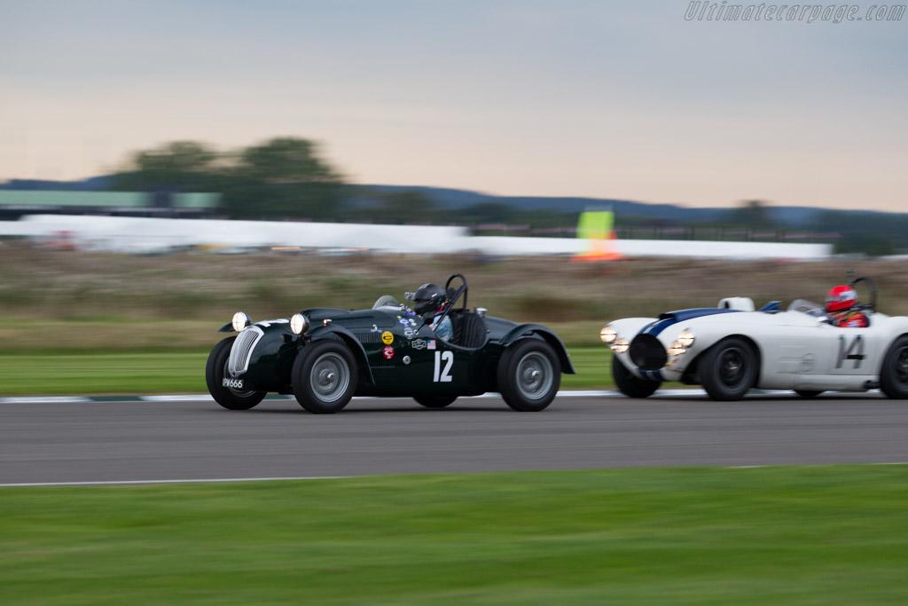 Frazer Nash Le Mans Replica - Chassis: 421/100/172 - Entrant: Jon Breslow - Driver: Jon Breslow / Najeeb Khan  - 2015 Goodwood Revival