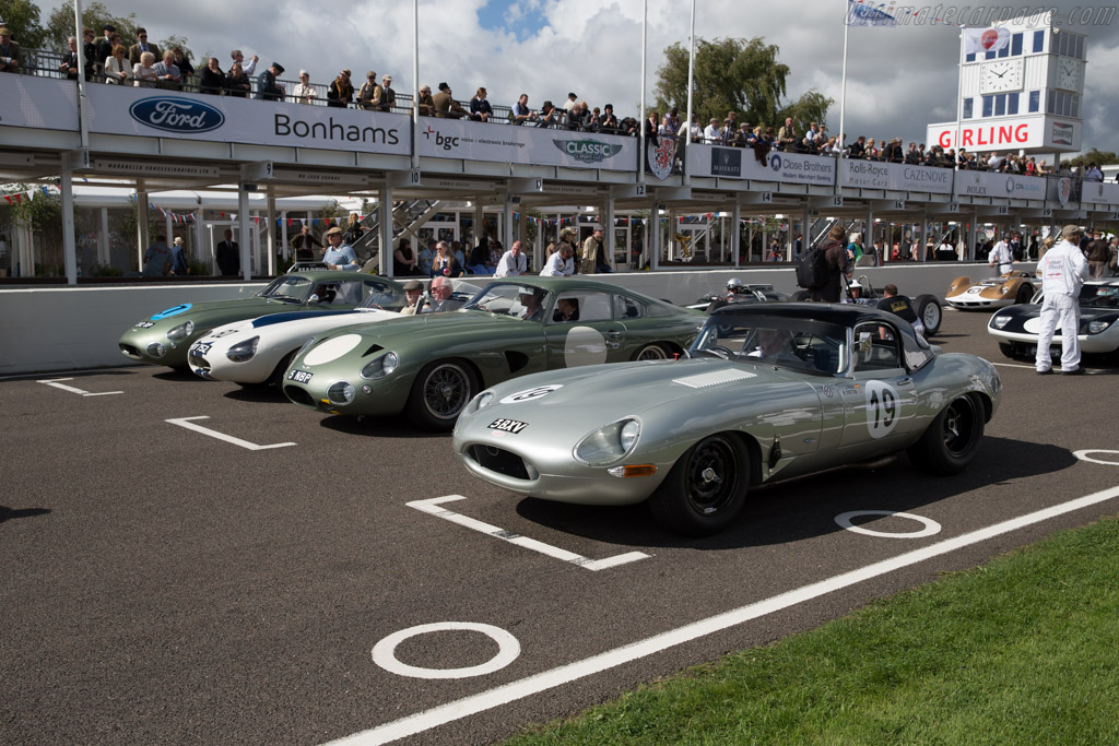 Jaguar E-Type - Chassis: 850010 - Entrant: Reial Auto Club Catalunya  - 2015 Goodwood Revival