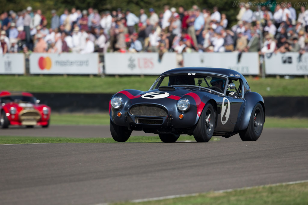 AC Shelby Cobra - Chassis: CSX2049 - Driver: David Hart/Guido van de Garde  - 2016 Goodwood Revival