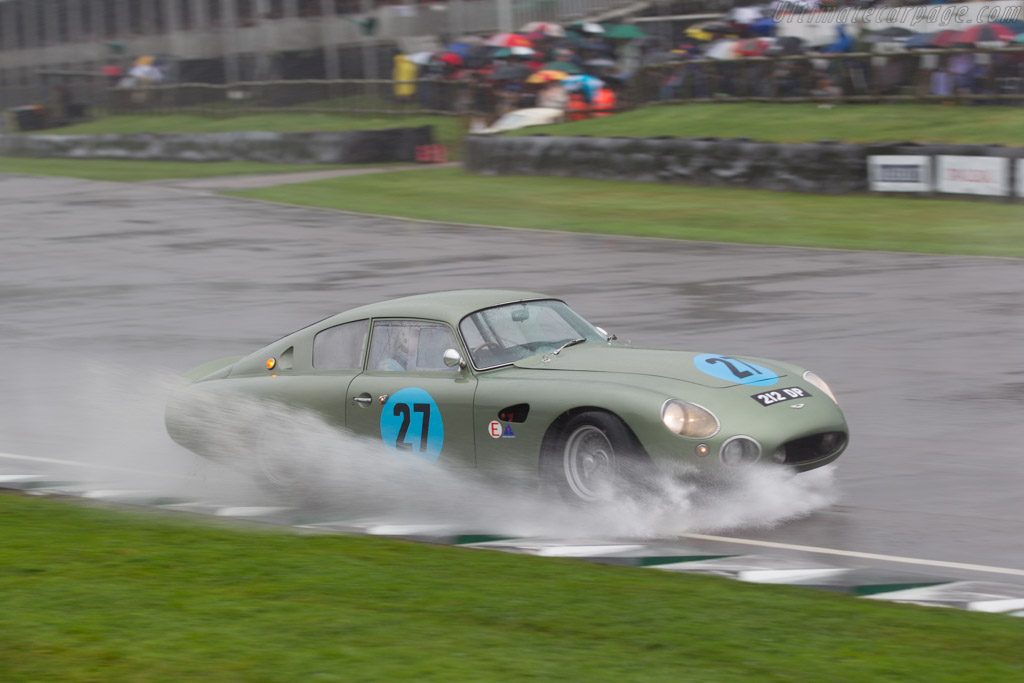 Aston Martin Project 212 - Chassis: DP212/1 - Driver: Wolfgang Friedrichs / Simon Hadfield  - 2016 Goodwood Revival