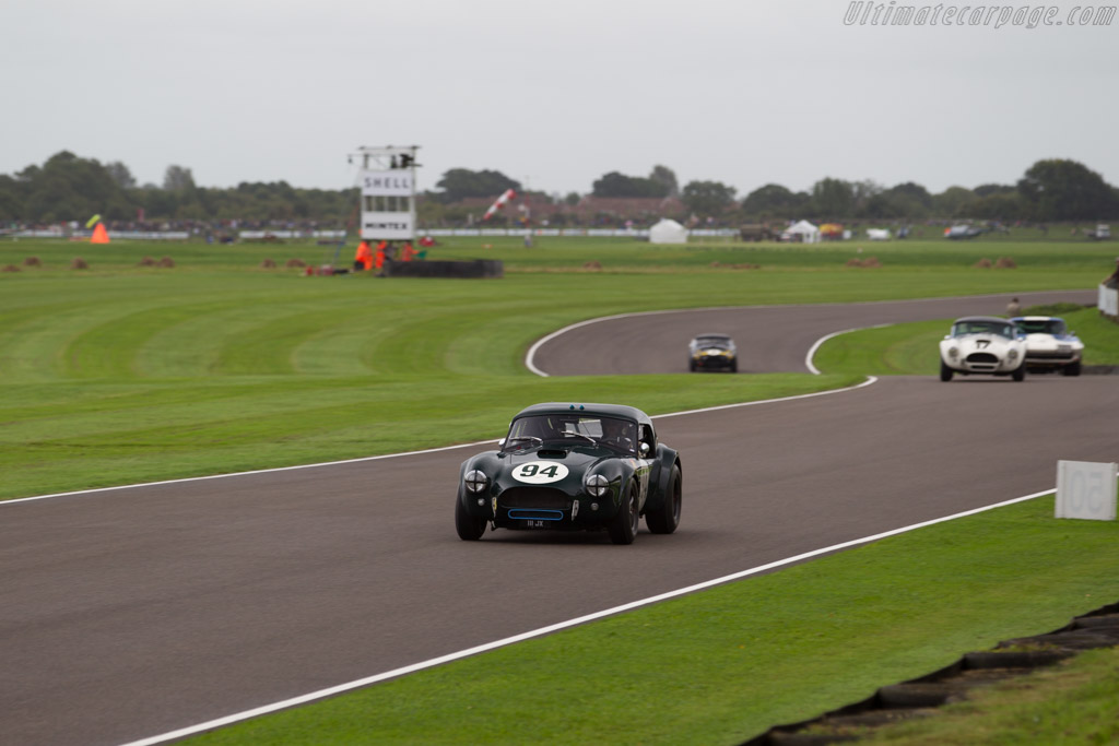 AC Cobra - Chassis: CSX2016 - Entrant: Jason Wright - Driver: Michael Gans / Andrew Wolfe  - 2017 Goodwood Revival