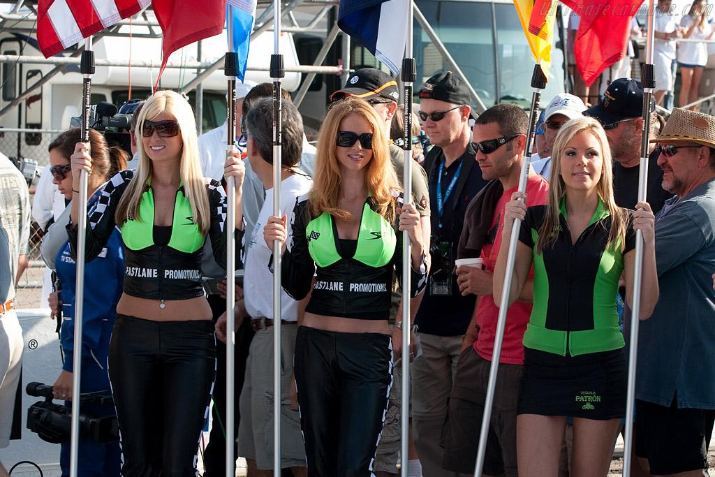 The grid    - 2009 Sebring 12 Hours