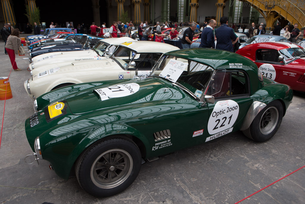AC Shelby Cobra - Chassis: CSX2348 - Driver: Mark Freeman / Michael Ellis  - 2014 Tour Auto