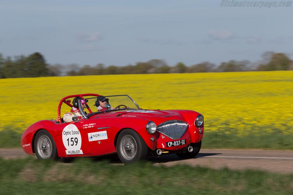 Austin Healey 100/4 - Chassis: BN1L-149635 - Driver: Stefano Friscia / Guillaume Meurisse  - 2014 Tour Auto