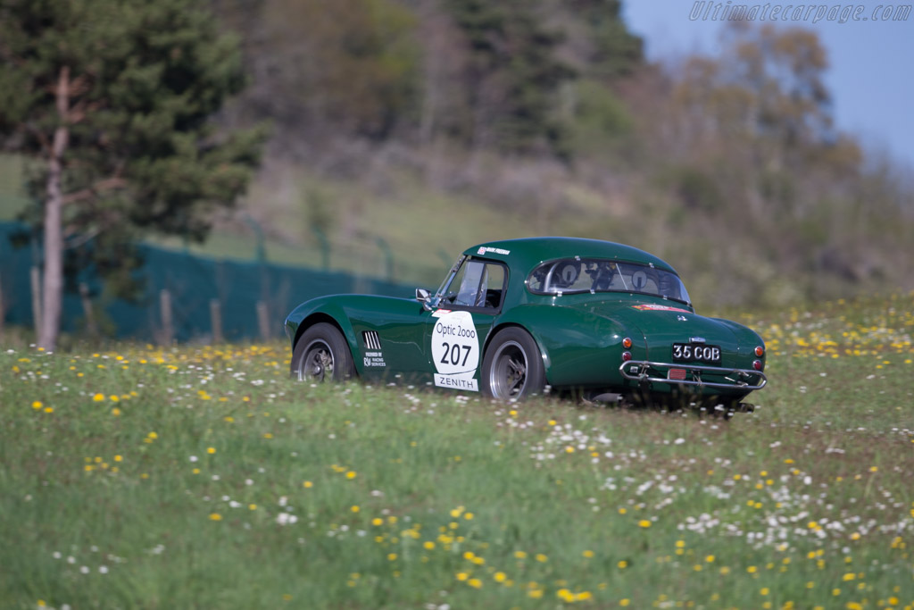 AC Shelby Cobra - Chassis: CSX2348 - Driver: Mark Freemann / Nigel Armstrong  - 2015 Tour Auto