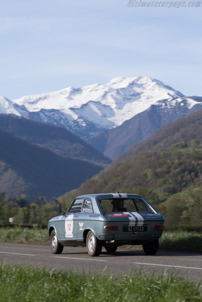 Peugeot 204 Coupe  - Driver: Francois de Gaillard / Mathieu Planchon - 2015 Tour Auto