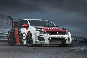 Click here to open the Peugeot 308 TCR gallery
