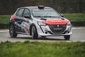 Click here to open the Peugeot 208 Rally 4 gallery