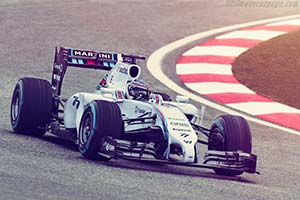 Click here to open the Williams FW36 Mercedes gallery